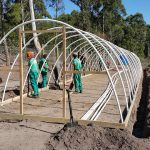 Eco Tunnels